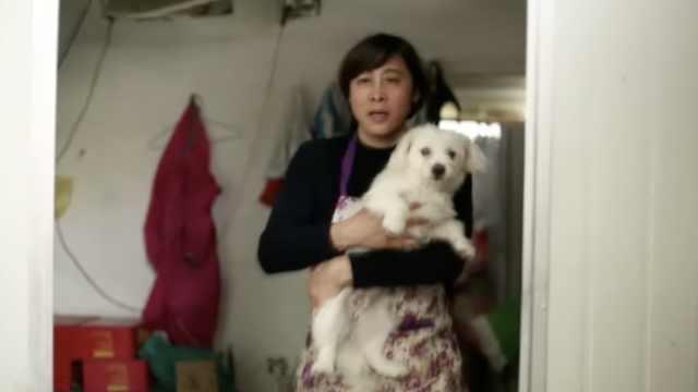 她曾是世界冠军,现收养400只流浪狗