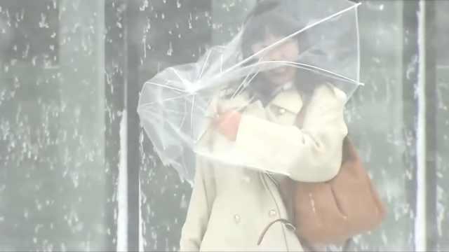 北海道遭遇暴风雪,刮到人怀疑人生