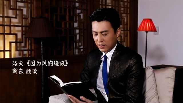 听靳东读洛夫:《因为风的缘故》