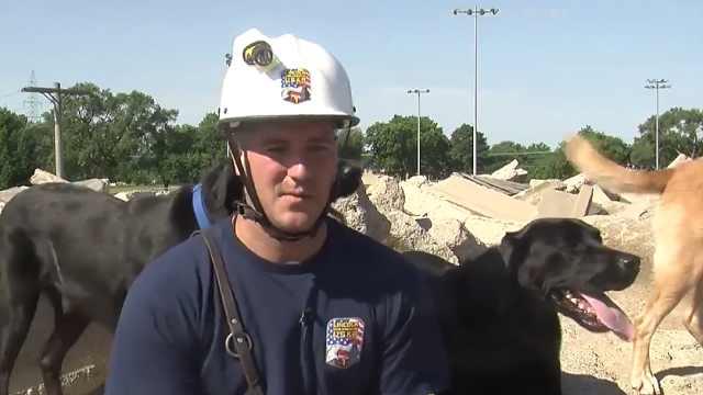 西班牙的搜救犬,效率惊人