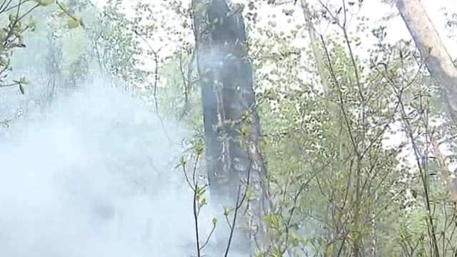 大兴安岭火灾进展:局部火势被控制
