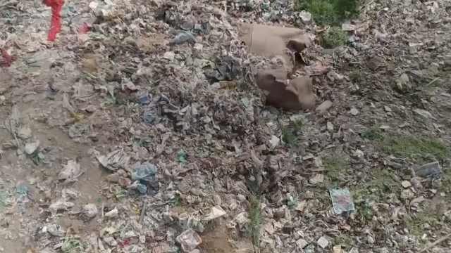 脏乱差!印度贫民窟垃圾堆积成山