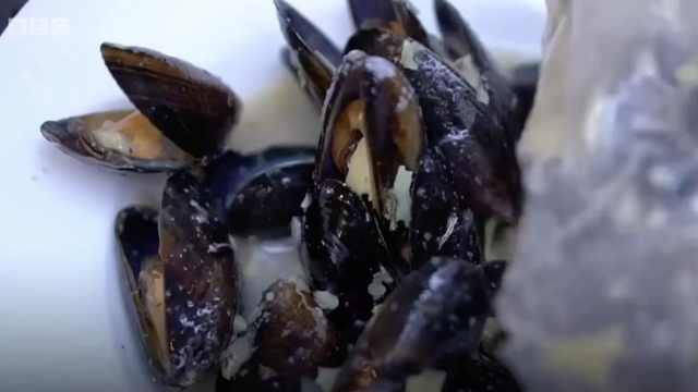 注意!你吃的贝类海鲜里可能有塑料