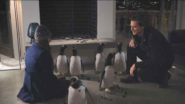 几分钟看喜剧片《波普先生的企鹅》