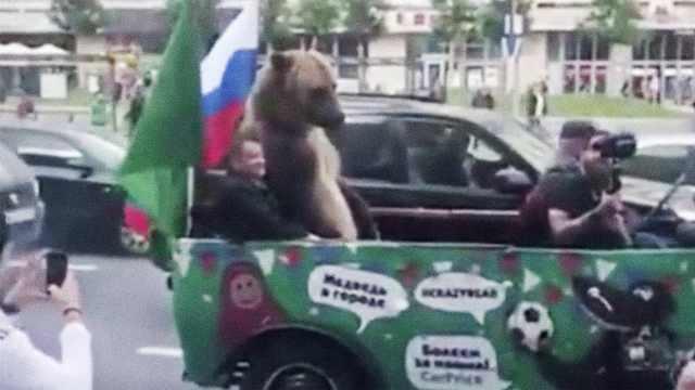 俄羅斯贏了!戰斗民族帶熊游街慶祝