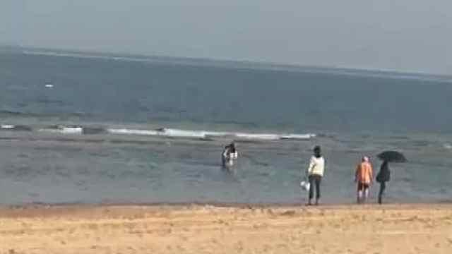 点赞!游客救起溺水者