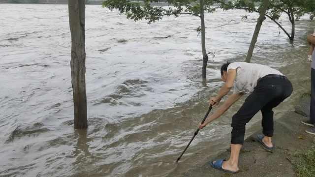 洪峰过境水湍急,市民冒险撒网捕鱼
