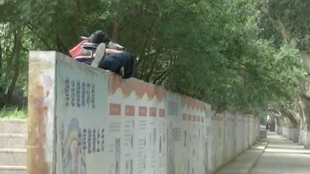 汗!他2米高墙头睡觉,路人:真功夫