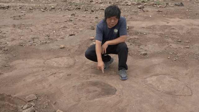 山东再现恐龙足迹,当地已着手保护