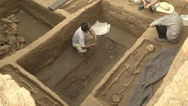 山东现东周墓群,尸骨完整未有盗迹