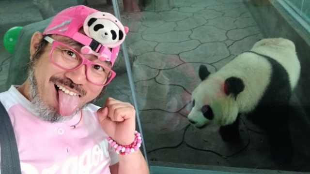 日本外教游遍中国:要集齐熊猫合影