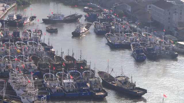 台风来了!瑞安800艘渔船入港避风