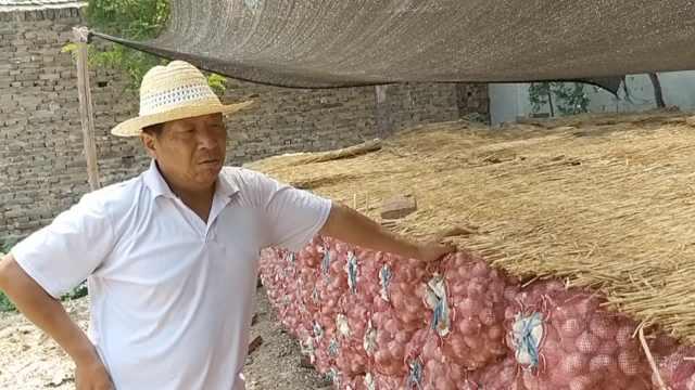 河北大名2.6亿斤大蒜滞销,急坏蒜农