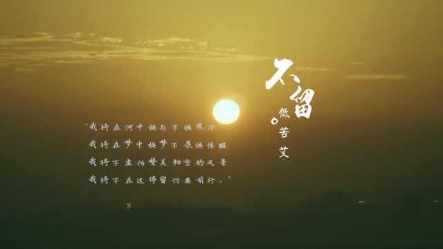 低苦艾《不留》MV——巡演版