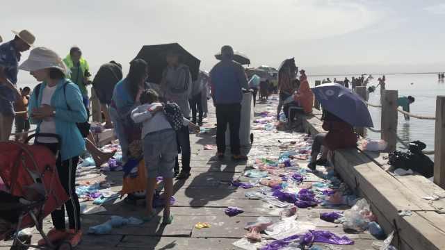 4万人游茶卡盐湖,天空之镜变垃圾场