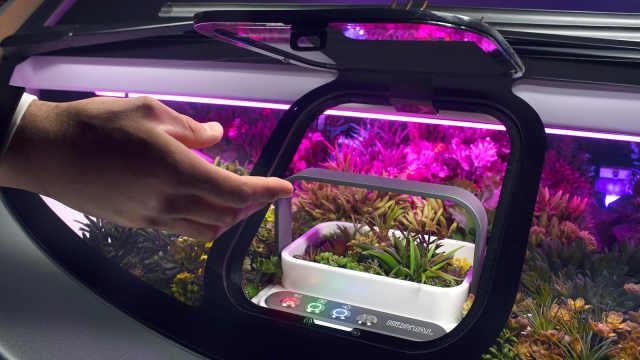 自带暖棚可养植物的概念车Oasis