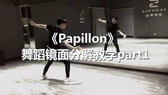 《Papillon》舞蹈镜面分解教学p1