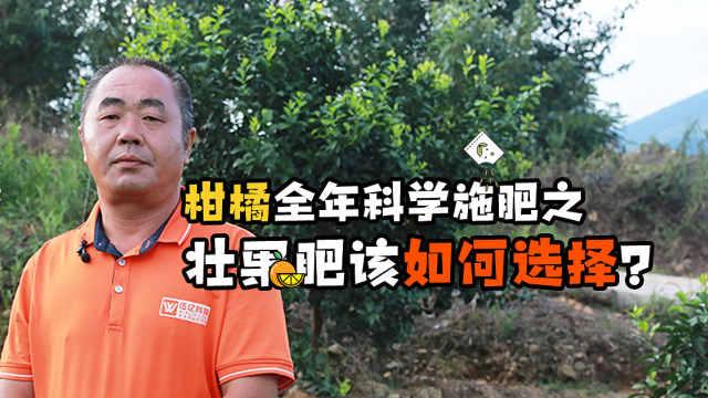科学施肥促高产之柑橘壮果肥怎么选