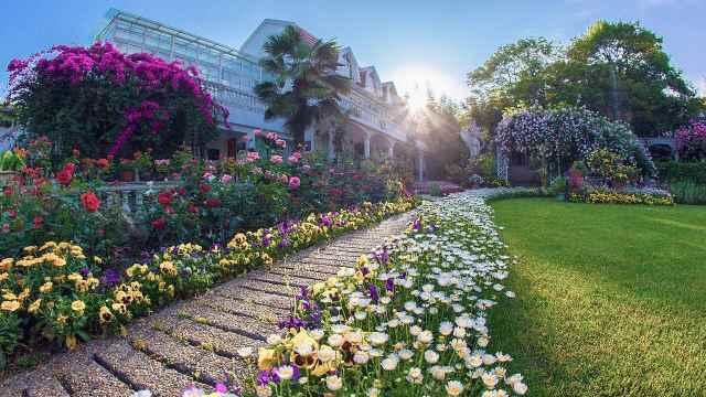 安徽爷爷花1万块种出最美私家花园