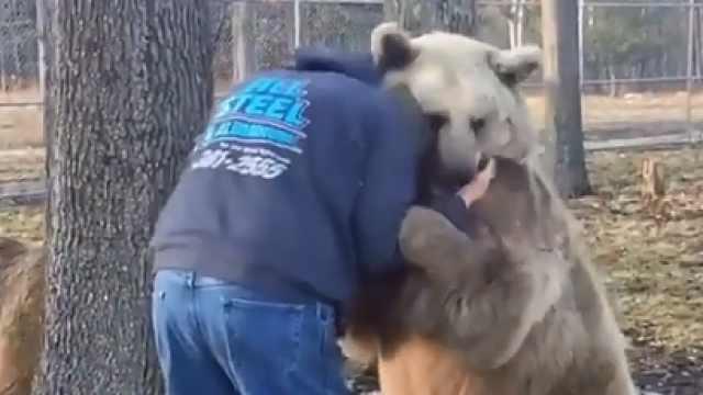 站住!本熊要给你一个爱的抱抱!