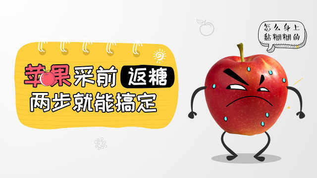 苹果采前返糖是水心病!两招能搞定