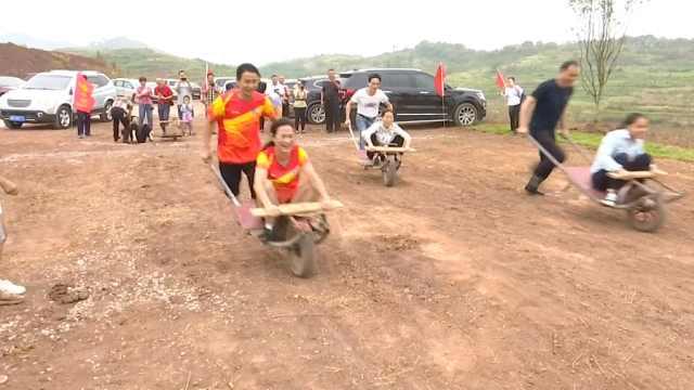 丰收节办农民运动会,外地游客玩嗨