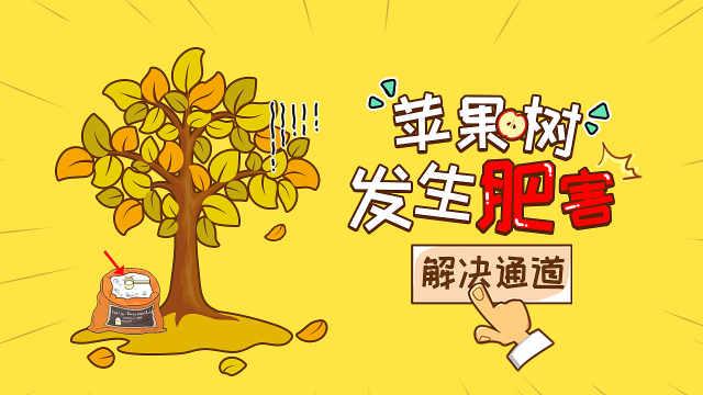 苹果树肥害四措施补救