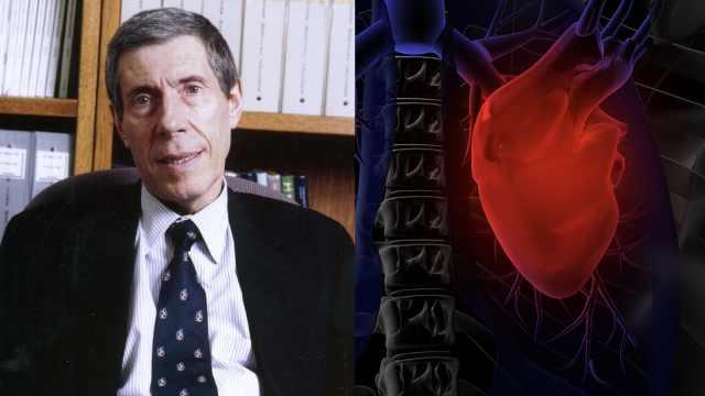 哈佛造假恐波及中国心脏干细胞研究
