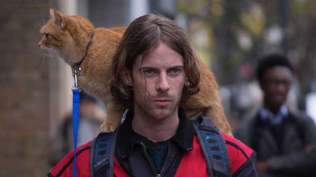 《流浪猫鲍勃》感动观众