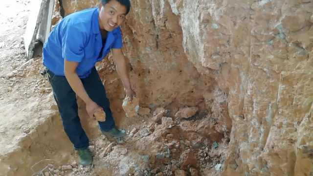 厉害了!湖北村民牛棚里挖出恐龙蛋