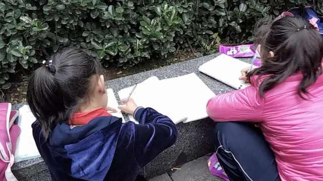 小学生蹲路边写作业:常忙到凌晨1点