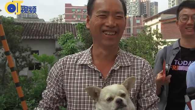 深圳市开展流浪犬收治行动