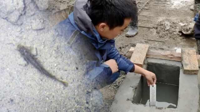 济南老街挖出新泉,水温18℃还有鱼