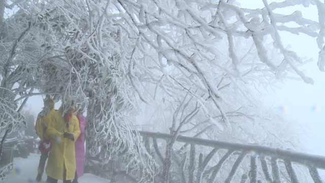 天门武当初雪,南方游客张家界玩嗨