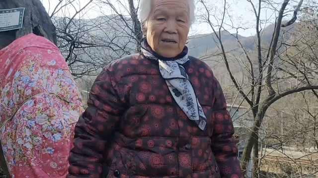 8旬老太为千年古藤穿棉袄:怕它受冻