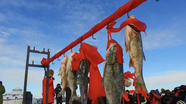 黑龙江冬捕鼓乐齐鸣,头鱼卖了6万8