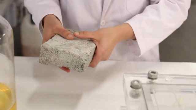 尿液变砖头,环保又坚固!