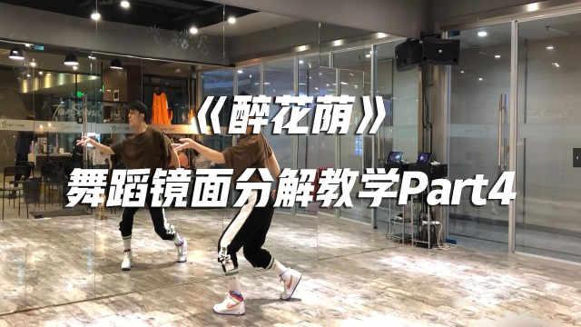 《醉花荫》舞蹈镜面分解教学P4