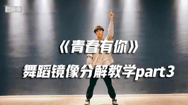 《青春有你》舞蹈镜像分解教学p3