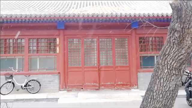 游客故宫喜迎飘雪:红墙白瓦太美了