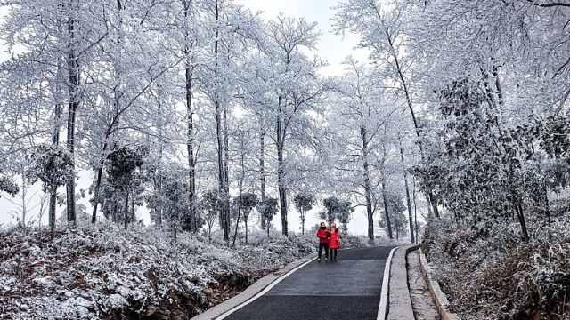 瑞雪兆丰年!华蓥山迎猪年首场降雪