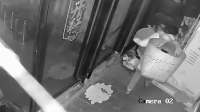 女子两次偷走会所垃圾桶,扔下垃圾