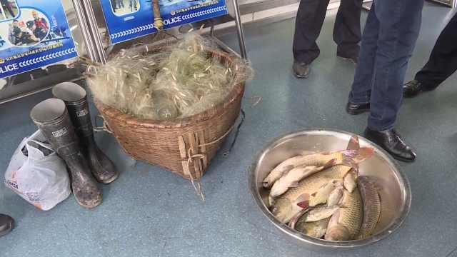 禁渔期首日,他顶风作案捕捞12条鱼