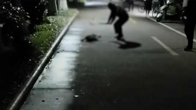 曝校内流浪狗被铁锹打死,学校介入