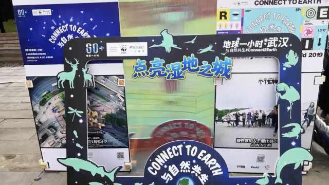 """知名机构音乐节推广""""地球1小时"""""""