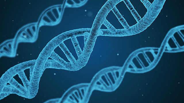 美国大学研究:贫穷会留下基因印记