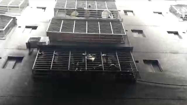 桂林民房火灾5人死,学校:排查学生
