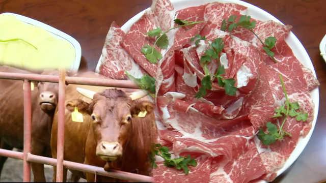 听音乐长大的牛:每1块肉都像大理石