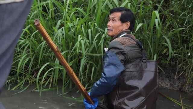 农村张大叔带着8旬大哥下河捕田螺