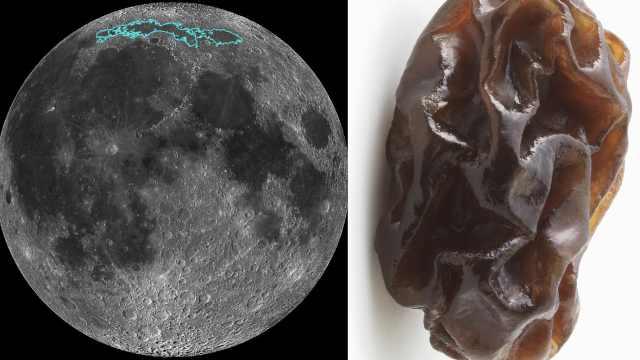 NASA:月球正像葡萄干一样萎缩